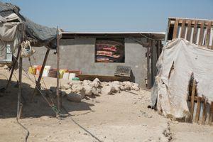 The Beduin