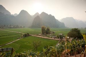 Rice fields in Dien Bien Province