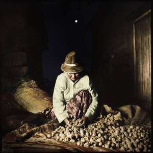 Selection of potatoes with the moon in the background