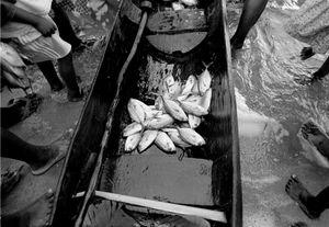 """Sahambava Fishermen"" Sahambava 1996"