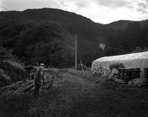 """In Naraha town, trees grow like crazy as no one is around to take care of the farmland. Some parts have become jungle-like. From the series """"Fragments/Fukushima"""" © Kosuke Okahara"""