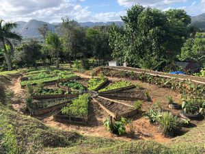 Organic Farm, Vinales