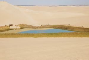 Oasis Of Siwa Egypt