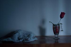 Silent_Solitude_04
