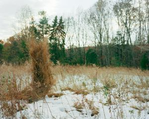 Ghillie Suit (Weeds), 2012© Jeremy Chandler