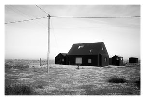 Dungeness #1