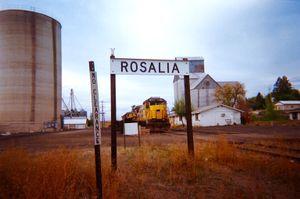 Rosalia 1