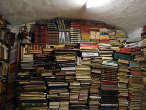 """A Scattering of books, a miscellany of shelves,"" 2015"