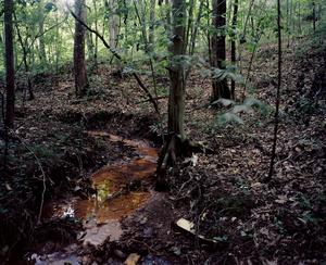 Contaminated Creek. POCA RIVER BASIN, WEST VIRGINIA. 2012