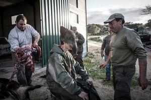João Pedro Pereira, 19 years old, first time killer of wild animal. Hunting initiation ritual. © Antonio Pedrosa