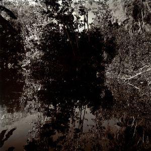 Reflection Study #2, Fort Lauderdale, FL, 2009                                                             © Kimberly Schneider