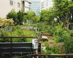 Aoyama Kitamachi Apaato Gardens #14
