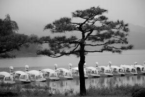 © Kyunghee Lee