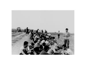 refugees - sid - serbia - 2015