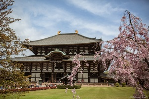 Todai Temple, Nara