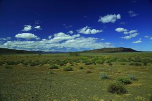 Groot Karoo / A typical landscape of the Great Karoo (Groot Karoo in Afrikaans): dry, semi-desert vegetation, no trees, wide spaces and blue skies.