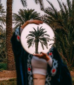 Island of a Million Palm Trees