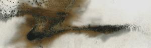 Untitled Work of Fire .02-09-14 2013 10x32 Unique gunpowder generated gelatin silver print.