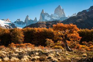 Autumn at Mt.Chalten-2