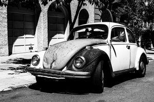 Little Old Beetle