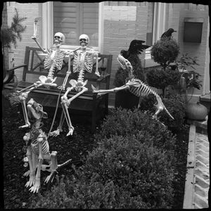 Friendly Halloween Neighbors