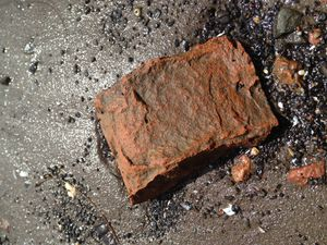 Orphan Brick - In the clay silt of the Hudson