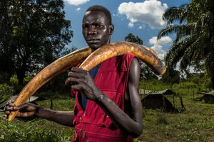 © Brent Stirton, Michael Oryem, 29, is a recently defected Lord's Resistance Army fighter whose LRA group was involved in the poaching of Ivory in Garamba National Park in the Democratic Republic of Congo.17 November 2014, Nzara, South Sudan. Series: A violation of Eden