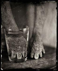 A Glass of Water ©Karoline Schneider 2012