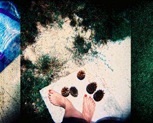 Footloose pinecones