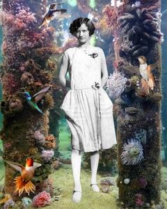 Mrs McMillon's Hummingbird Garden, 1921.