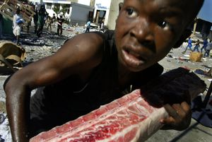 2nd prize Spot News Single © Shaul Schwarz, Israel, Corbis. Young boy looting, Port-au-Prince, Haiti, 27 February. An Haitian child loots a piece of meat at the main commercial seaport at Port-au- Prince in February. In the last week of February looters raided aid-agency warehouses, making off with hundreds of tons of food and commodities.