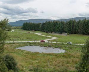 Highland Wildlife Park, Kincraig, Scotland (2014)