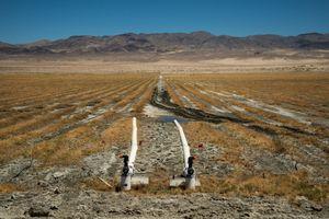Managed Vegetation Dust Mitigation Zone, Owens Lake, CA