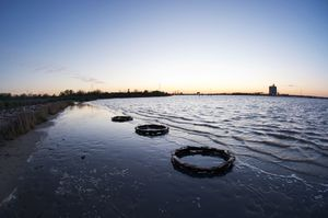 Wood Debris Three Circles © Jeremy Underwood
