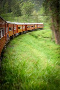 A train passing through the tea plantations