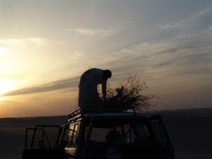 Desert Safari Siwa