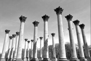 National Capitol Columns, U.S. Arboretum