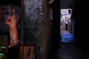 Kashgar lamb
