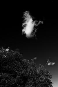 Cloud #002