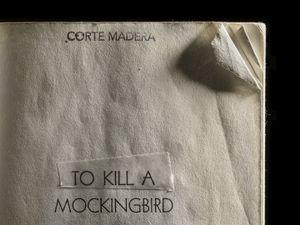 To Kill a Mockingbird, Dog-Eared Corner © Kerry Mansfield