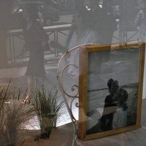 Window. Bd.Haussman. Paris.2007