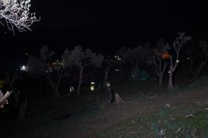 volunteers cleaning the hill of olive grove refugee camp on Lesbos