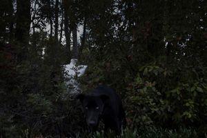 © Pavlos Lazos, participating artist in LensCulture FotoFest Paris, 2013