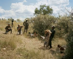 trophy leopard, at the end of the hunt, namibia-from the series 'hunters'-David Chancellor