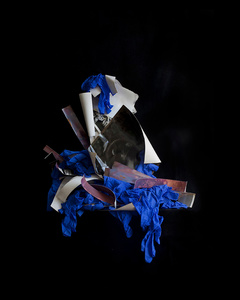 """From the Blue Period  Chromogenic print in to limited editions of seven 20""""x24"""""""