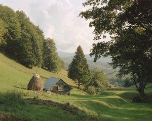 The outskirts of Ciocanu Village, in the Dambovicioara Hunting Area [August, 2018]