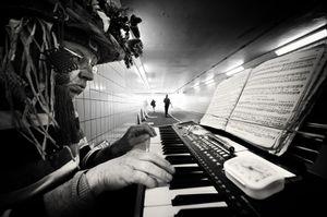 Falmer Station Musician