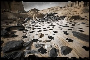 The Puzzle   © Seán Duggan
