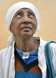 Portrait of a Havanese