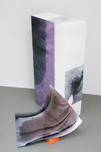 Sweaty Sculpture (slide)